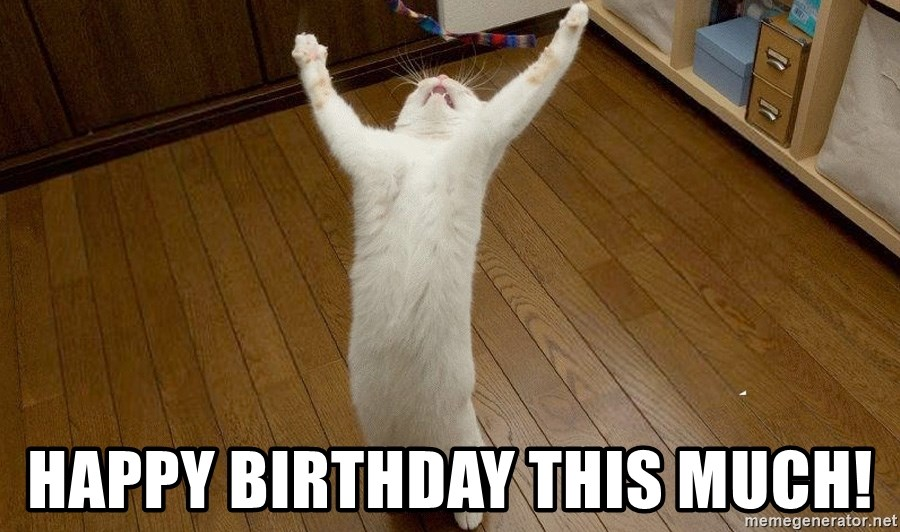 praise the lord cat - happy birthday this much!