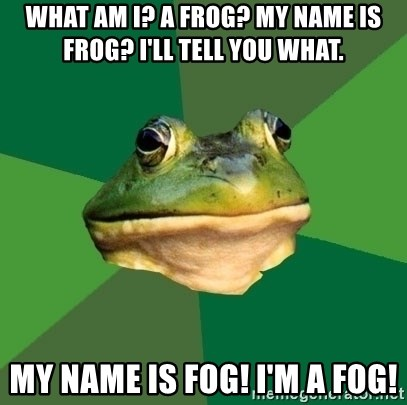 Foul Bachelor Frog - what am i? a frog? my name is frog? i'll tell you what. my name is fog! i'm a fog!