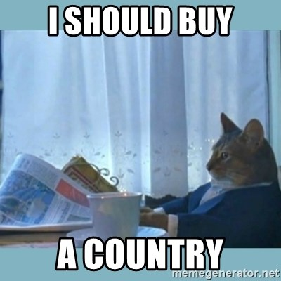 rich cat  - I SHOULD BUY A COUNTRY