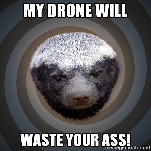 Fearless Honeybadger - My Drone will WASTE your ass!