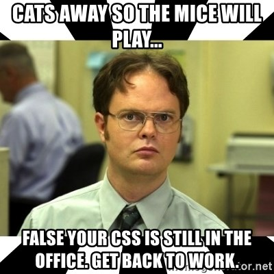 Dwight from the Office - Cats away so the mice will play... FALSE your CSS is still in the office. Get back to work.