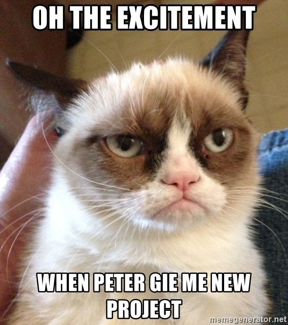 Mr angry cat - oh the excitement when peter gie me new project