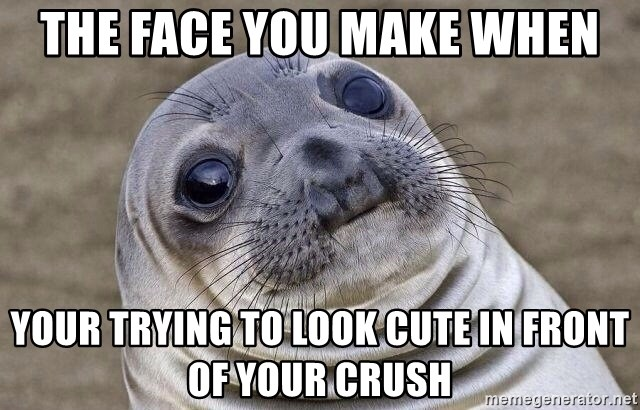 Awkward Seal - the face you make when your trying to look cute in front of your crush