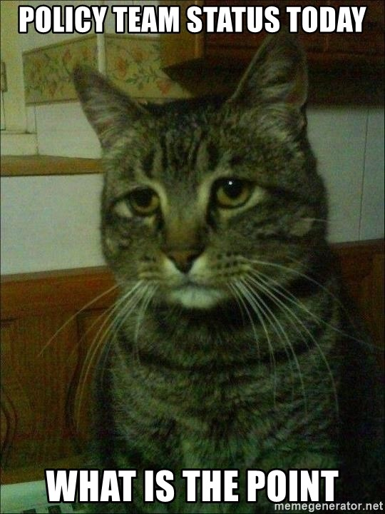 Depressed cat 2 - Policy Team Status Today WHAT IS THE POINT