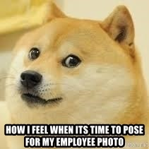dogeee - How i feel when its time to pose for my employee photo