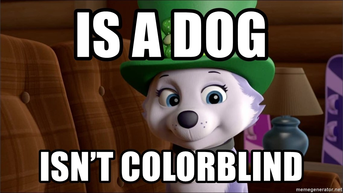 Good Luck Everest  - Is a dog Isn't colorblind
