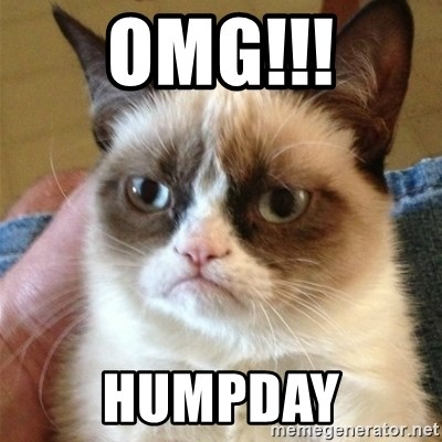 Grumpy Cat  - OMG!!! Humpday