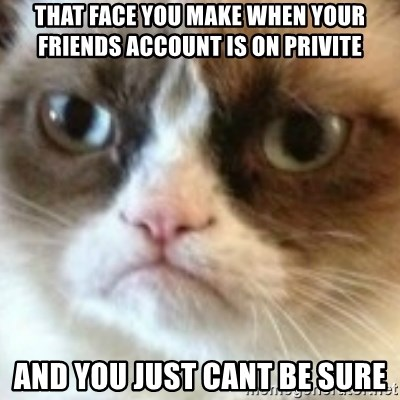 angry cat asshole - that face you make when your friends account is on privite  and you just cant be sure