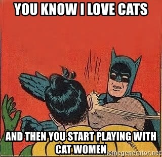 batman slap robin - You know I love cats And then you start playing with cat women