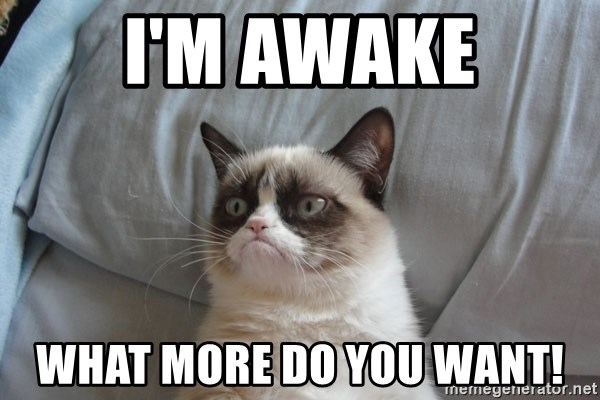 Grumpy cat good - I'm Awake What more do you want!