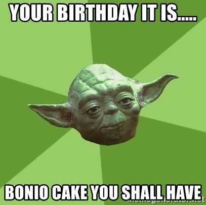 Advice Yoda Gives - Your birthday it is..... Bonio cake you shall have