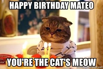 Birthday Cat - Happy Birthday Mateo You're the Cat's Meow