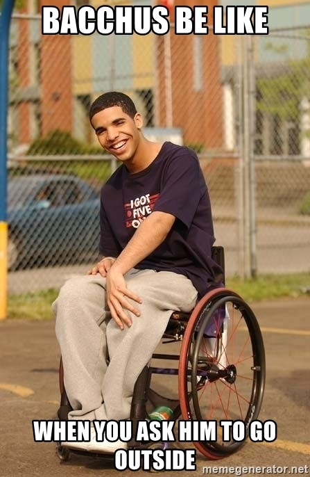 Drake Wheelchair - Bacchus be like When you ask him to go outside