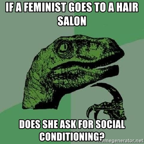 Philosoraptor - if a feminist goes to a hair salon does she ask for social conditioning?