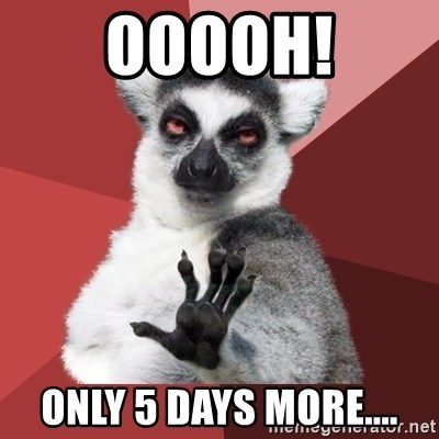 Chill Out Lemur - ooooh! only 5 Days more....