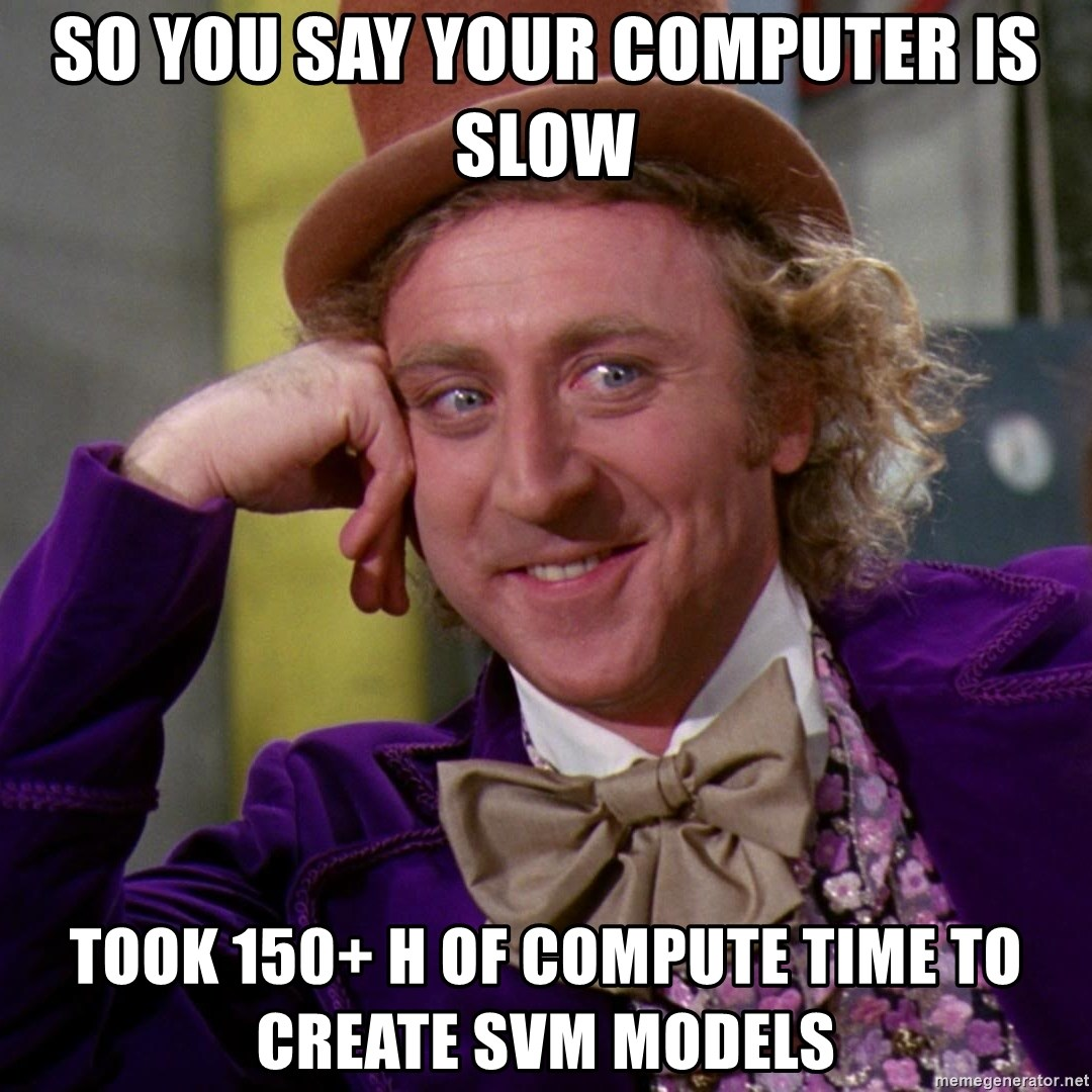 Willy Wonka - so you say your computer is slow Took 150+ h of compute time to create SVM models