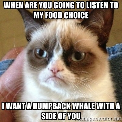 Grumpy Cat  - When are you going to listen to my food choice I want a humpback whale with a side of YOU