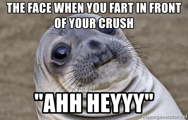 "Awkward Seal - The face when you fart in front of your crush ""ahh heyyy"""