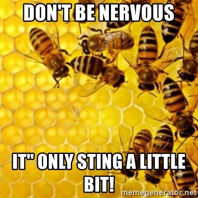 Honeybees - Don't be nervous  It'' only sting a little bit!