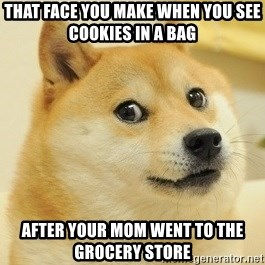 Dogeeeee - That face you make when you see cookies in a bag after your mom went to the  grocery store