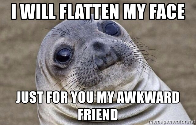 Awkward Seal - i will flatten my face  just for you my awkward friend