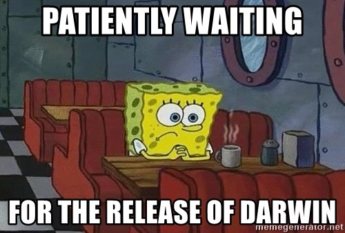 Coffee shop spongebob - PATIENTLY WAITING FOR THE RELEASE OF DARWIN