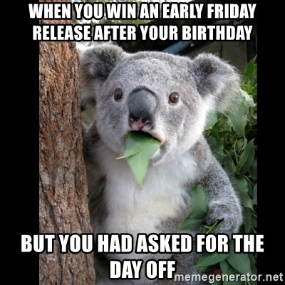Koala can't believe it - When you win an early friday release after your birthday but you had asked for the day off