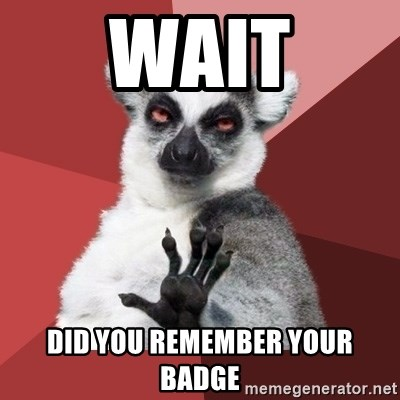Chill Out Lemur - wait did you remember your badge