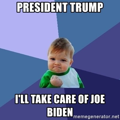 Success Kid - president trump i'll take care of Joe Biden