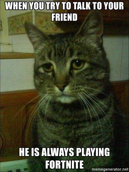 Depressed cat 2 - When you try to talk to your friend he is always playing fortnite