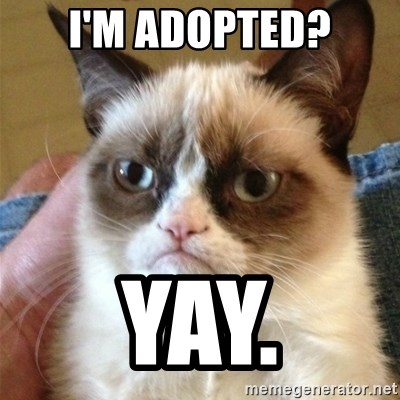 Grumpy Cat  - I'm adopted? Yay.