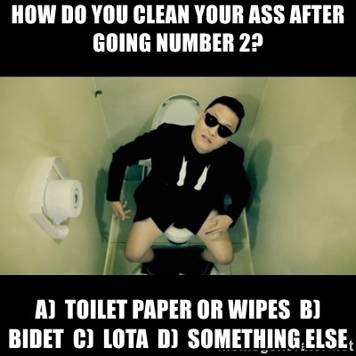 How Do You Clean Your Ass After Going Number 2 A Toilet Paper Or Wipes B Bidet C Lota D Something Else Psy Toilet Meme Generator