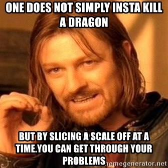 One Does Not Simply - One does not simply insta kill a dragon But by slicing a scale off at a time.You can get through your problems