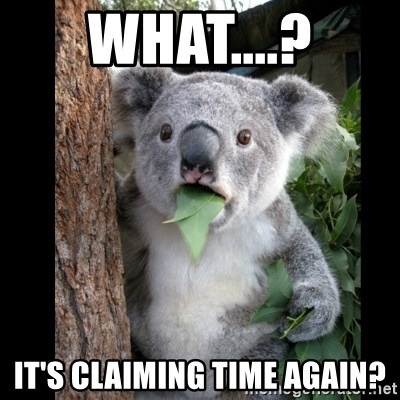 Koala can't believe it - what....? it's claiming time again?