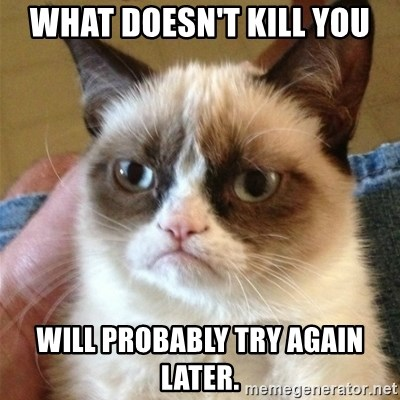 Grumpy Cat  - What doesn't kill you will probably try again later.