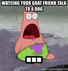 D Face Patrick - Watcing your goat friend talk to a dog ...