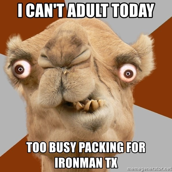 Crazy Camel lol - I can't adult today Too busy packing for IRONMAN TX