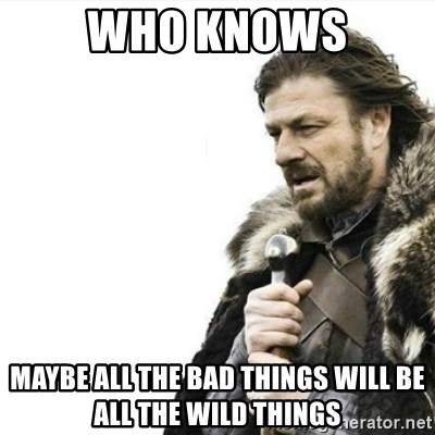 Prepare yourself - WHO KNOWS MAYBE ALL THE BAD THINGS WILL BE ALL THE WILD THINGS