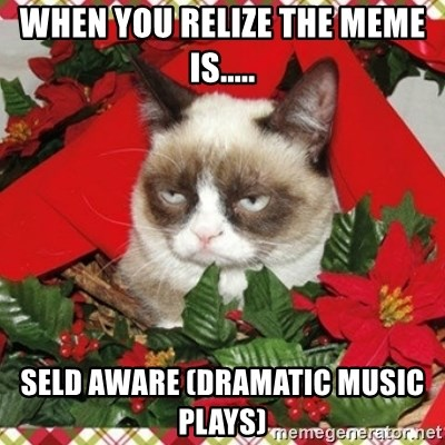 When you relize the meme is      Seld aware (dramatic music