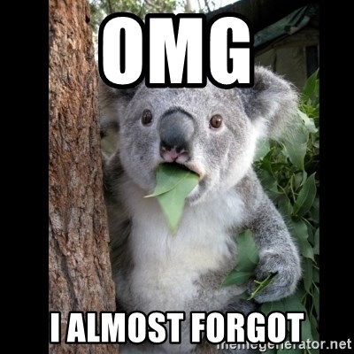 Koala can't believe it - OMG I ALMOST FORGOT