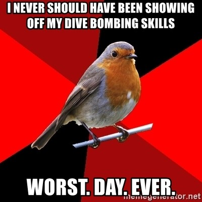 Retail Robin - i never should have been showing off my dive bombing skills worst. day. ever.