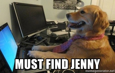 I have no idea what I'm doing - Dog with Tie - must find jenny