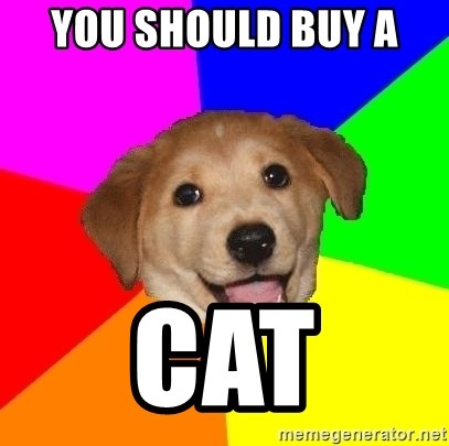 Advice Dog - You should buy a  CAT