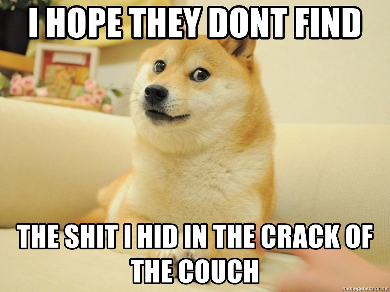 so doge - i hope they dont find the shit i hid in the crack of the couch