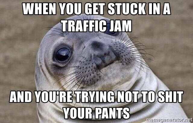 Awkward Seal - When you get stuck in a traffic jam and you're trying not to shit your pants