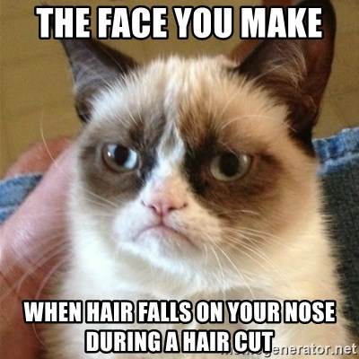 Grumpy Cat  - the face you make  when hair falls on your nose during a hair cut