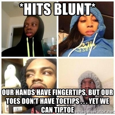 Hits Blunts - *HITS BLUNT* our hands have fingertips, but our toes don't have toetips . . . yet we can tiptoe