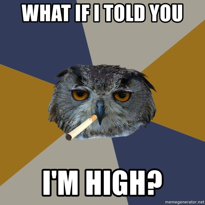 Art Student Owl - What if I told you I'm high?