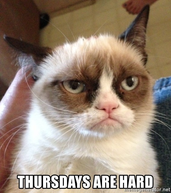 Grumpy Cat 2 - thursdays are hard