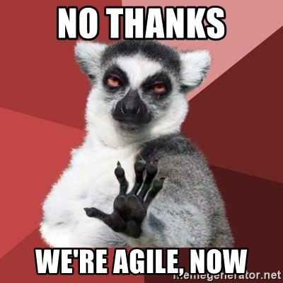 Chill Out Lemur - No Thanks We're Agile, Now